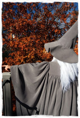 Homemade Gandalf Costume