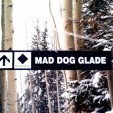 Mad Dog Mom Glade at Powderhorn