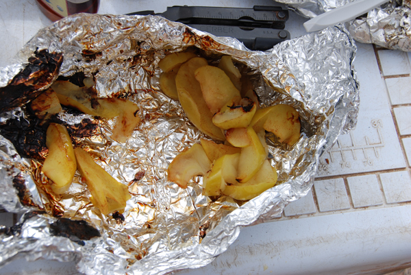 Few minutes in the hot coals, and you've got a close approximation to apple pie.